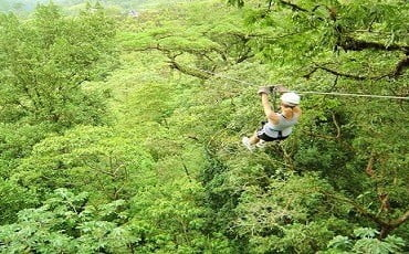 ziplining tours
