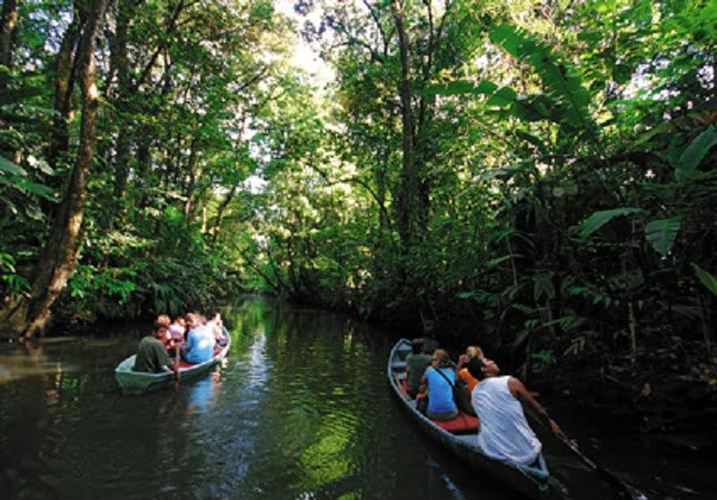 national park tortuguero