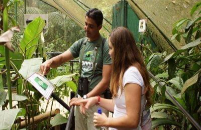 rainforest-trip