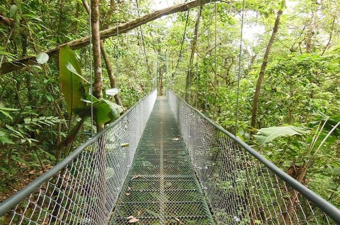 Puentes Colgantes (1)