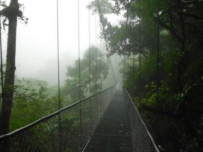 Hanging Bridges San Luis