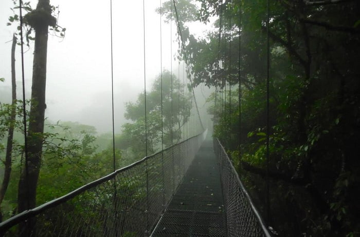 Hanging Bridges San Luis