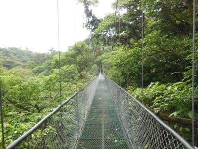 hanging bridges