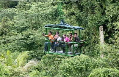 rainforest-tours
