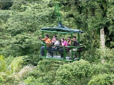 rainforest-tours