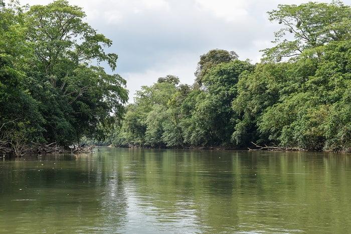 rainforest-adventures